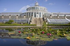 Gothenburg Botanical Gardens is the largest of its kind in Sweden with a total area of 175 hectares (ca 430 ha) which is largely a nature reserve. Botanical garden located in the Carl Slottbergs Gata 22A is home to more than 12,000 species of plants.