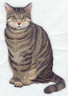 BROWN TABBY CAT - Machine Embroidered Quilt Blocks (AzEB) | AzEmbroideryBarn - Quilts on ArtFire