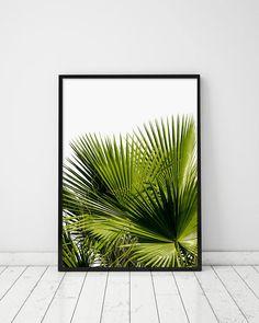 Green Palm Leaves Green Palm Leaf Greenery Green Tropical