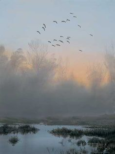 Landscape Art Print; First Flight-Mallards by Peter Mathios | Wild Wings