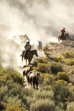 Perfect cowboy adventure