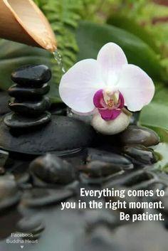 Everything comes to you in the right moment. Be patient..*