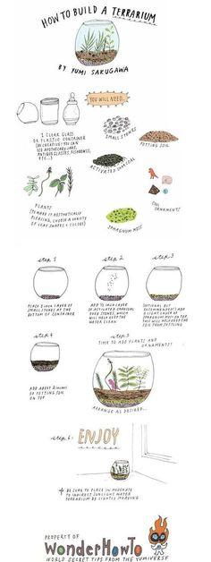 DIY Build Your Own Terrarium DIY Terrarium Garden