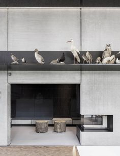 Casa de Caza / Arkitema Architects