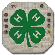 4-H Pin Board, good for an office to show off honor club/all stars/vol state pins and name tags.