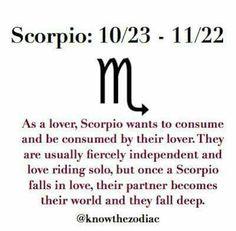 All About Scorpio, the most passionate, powerful and magnetic members of the zodiac. Scorpio Sagittarius Cusp, Scorpio Zodiac Facts, Scorpio Traits, Scorpio Sign, Scorpio Quotes, Scorpio Woman, Scorpio Characteristics, Scorpio Female, Zodiac Star Signs