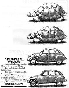 1984 Advert for the Citroen Vintage Advertisements, Vintage Ads, Tortoise Care, 2cv6, X Car, Honda Crv, Car Advertising, Car Humor, Car Manufacturers