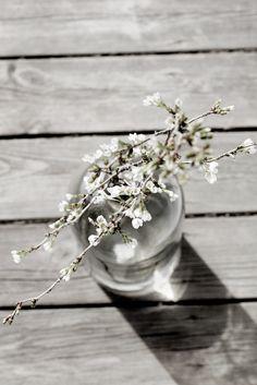 Life's Silverlining and I Foto_Inredning_Resor_Stil & Skönhet: Inredning och blommor