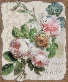 Rose Jardin-jp23937 Print By Jean Plout