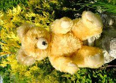 Beautiful old Diem bear. oldteddybearshop.co.uk