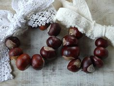 Start collecting some conkers, a. horse chestnuts or buckeyes, because these are the perfect natural Autumnal crafts and decoration ideas (kids-friendly). Be Eco: Join the Green and Share the Love! Hobbies And Crafts, Crafts For Kids, Diy Crafts, Conkers Craft, Handmade Christmas, Christmas Crafts, Buckeye Crafts, Sister Crafts, Craft Stalls