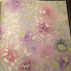 Enchanted Forest Coloring Book Colouring Adult