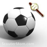 Webelos Scout Activity Badges - Community Group | Scouts ...