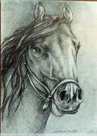 dibujo de caballos a lapiz - Buscar con Google