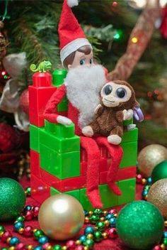 """Santa"" elf with tiny stuffed animal"