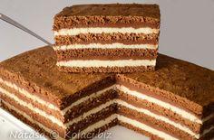 Recepti za torte i ideje za rođendanske torte My Favorite Food, Favorite Recipes, My Favorite Things, Sweet Recipes, Cake Recipes, Torte Recepti, Torte Cake, Cake Art, Vanilla Cake