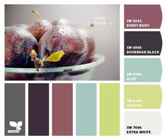 Chip It! by Sherwin-Williams