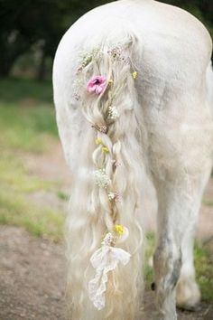 decorated horse tail.