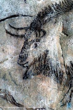 niaux - un autre tête de bison Lascaux, Chauvet Cave, Religions Du Monde, Art Pariétal, Paleolithic Art, Art Rupestre, Cave Drawings, Art Premier, Statues
