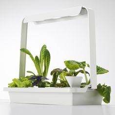 IKEA – Grow indoors