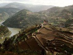 Douro River Valley, Portugal.
