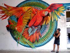 Macaws street art by Farid Rueda Murals Street Art, 3d Street Art, Graffiti Murals, Amazing Street Art, Mural Art, Street Art Graffiti, Street Artists, Amazing Art, Art Fauvisme