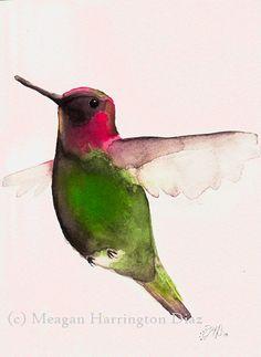 Hummingbird Art - Annas Hummingbird - 5x7 Fine Art Print Bird Fuchshia Pink and Green on Etsy, $18.00
