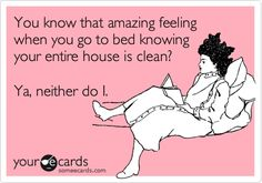 You know that amazing feeling when you go to bed knowing your entire house is clean? Ya, neither do I.