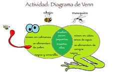 Compare contrasts with fun venn diagrams in Infant or preschool - Learn Spanish Visual Learning, Learning Spanish, Compare And Contrast, Spanish Lessons, Graphic Organizers, Pre School, Infant, Teacher, Science