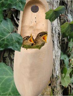 Des idées de décoration du jardin bio avec de la récup'