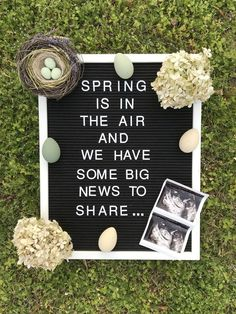 Krystin Gillard's Spring pregnancy message board announcement Pregnancy First, Pregnancy Trimesters Pregnancy Announcement To Parents, Cute Baby Announcements, Pregnancy Announcement Photos, Spring Maternity, Baby Planning, Everything Baby, Baby Time, Baby Gender, Baby Baby