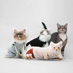 Cat Pillow - Bob Paisley