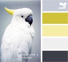 schwarz-weiß liebt farben. bei mir am liebsten naturtöne, dazu meeres- und…