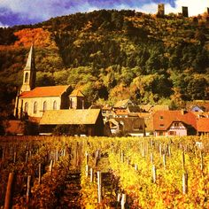 French Wine Property Listings, in case you're in the market...