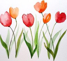 Watercolor: enjoying my first tulips Watercolor Beginner, Watercolor Paintings For Beginners, Watercolor Projects, Watercolor And Ink, Watercolor Illustration, Watercolor Flowers, Painting & Drawing, Flower Art, Art Drawings