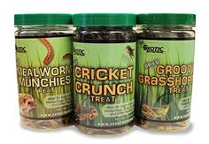 Dried Insect 3 Jar Pack - Crickets, Grasshoppers, Mealworms  Farm-raised, gut-loaded, frozen, then freeze dried to maintain nutritional value  Store for a year or longer without refrigeration  Mealworm Munchies (55 g.) + Cricket Crunch (45 g.) + Groovy Grasshoppers (40 g.).  Great source of protein for sugar gliders, hedgehogs, wild birds, chickens, turtles, tropical fish, geckos, bearded dragons, reptiles and other insect eating animals  Made in the USA - ZooPro sells exotic animal fe...