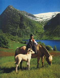 Young Norwegian girl on horse