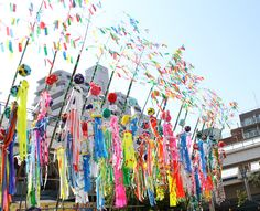 tanabata festival in japan august . Although actual star festival is on July Sendai area and others celebrate it in August. Arts And Crafts, Paper Crafts, Kids Crafts, Tanabata Festival, Star Festival, Japanese Festival, My Heritage, Streamers, Color Splash