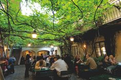The revitalized Biedermeier district near the MuseumsQuartier has countless restaurants cafés and bars with idyllic gardens - often slightly hidden in romantic courtyards. Peterborough Nh, Courtyard Cafe, Living Roofs, Relax, Heart Of Europe, Hidden Places, Lokal, Beer Garden, Garden Cafe