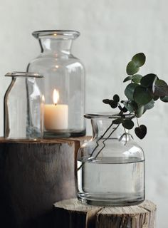 use eucalyptus in the bathroom to steam yourself when you're sick with a head cold...helps to clear you up