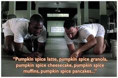 Can Put Pumpkin Spice in Everything! You Can Put Pumpkin Spice in Everything! - CheezburgerYou Can Put Pumpkin Spice in Everything! Funny Captions, Tumblr, Pumpkin Spice Latte, Pumpkin Pumpkin, Pumpkin Recipes, Pumpkin Waffles, Pumpkin Oatmeal, Pumpkin Cookies, Domingo