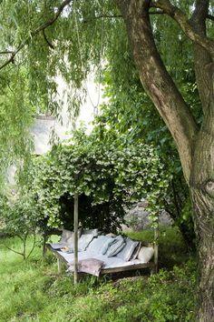 Garden bench with trellis.