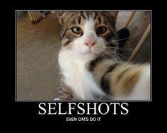 Selfshots