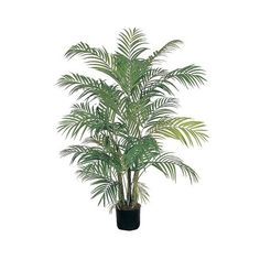 Nearly Natural 4' Areca Silk Palm Tree (2 010 UAH) ❤ liked on Polyvore featuring home, home decor, floral decor, plants, fillers, flowers, nature, green, fabric flowers и artificial silk flowers