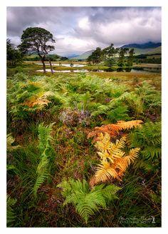 Loch Tulla, Scotland.