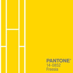 A tropical, floral-inspired shade, PANTONE 14-0852 Freesia's blazing yellow warmth and energy help set the stage for wardrobes this seaon. From PANTONE's Fashion Color Report for Spring 2014.  #FCRS14 #pantone
