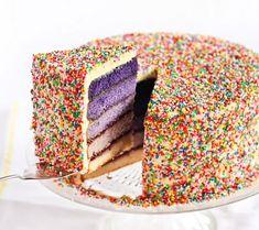 Ombre Sprinkle Cake!