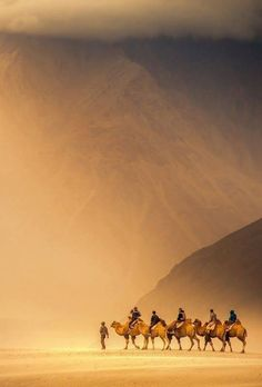 The high desert , Ladakh , India.