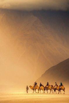 The high desert , Ladakh , India.