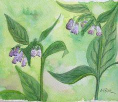 Watercolor Painting Botanical Art Purple by maryrichmonddesign, $36.00